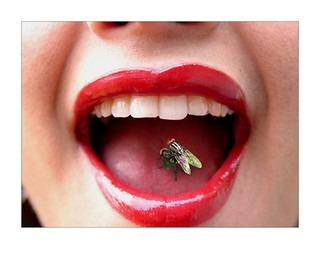 """Refranes populares – """"En boca cerrada no entran moscas"""""""
